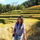 Terraced Rice Fields of Zapami Village & Pfutsero – Hidden Gems of Nagaland